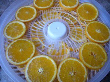 Orange slices arranged on trays inside a dehdrator.