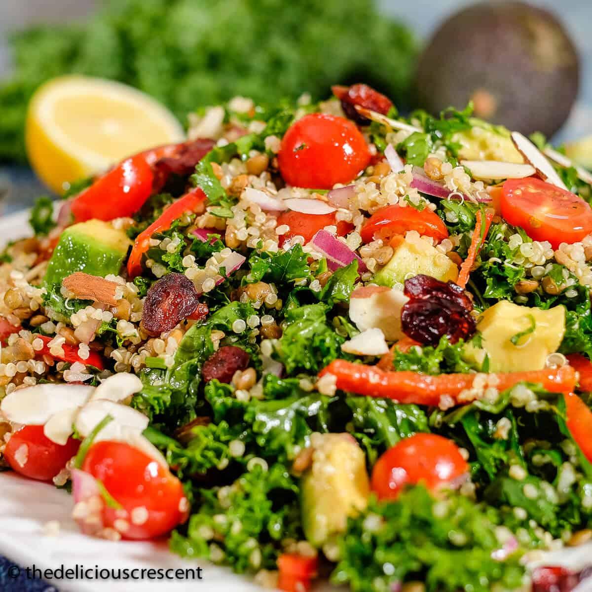 Kale Quinoa Avocado Salad Recipe